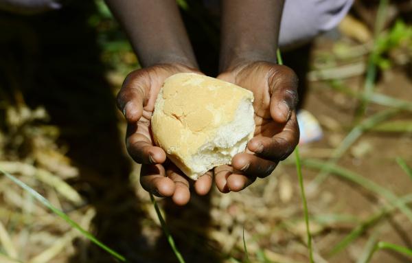 A escassez de alimento em várias partes do mundo é um dos fatores responsáveis pela desnutrição infantil.