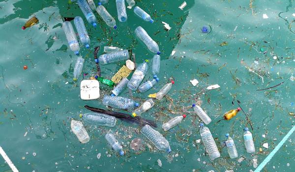 A poluição nos rios e oceanos prejudica o bom desenvolvimento das bacias hidrográficas.