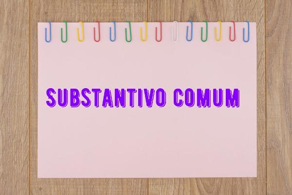 A classificação do substantivo em comum ou próprio pode ser observada facilmente, pois os substantivos próprios sempre se iniciam com letra maiúscula.