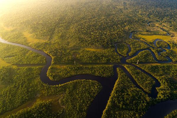 Floresta Amazônica: sua riqueza é fonte de especulações industriais.
