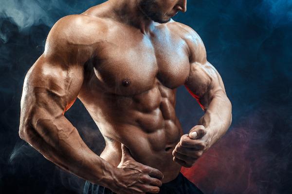 O desenvolvimento da massa muscular promove um aumento da massa magra.