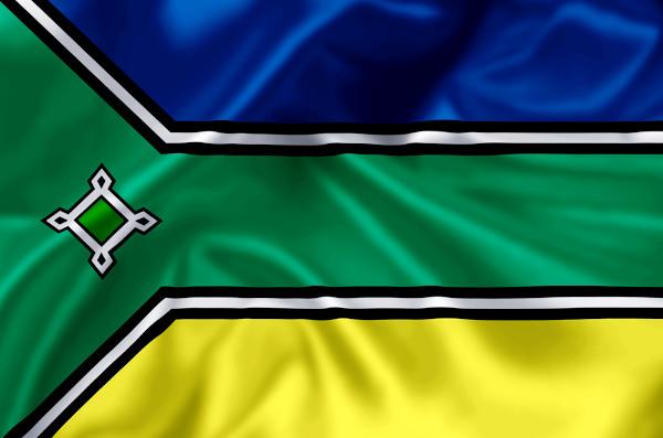 Bandeira do estado do Amapá.