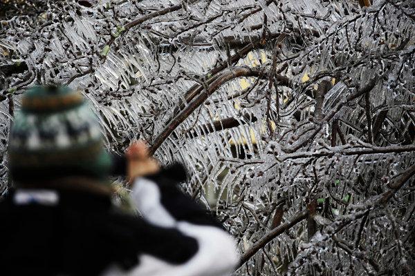 Os invernos catarinenses são rigorosos, com a incidência de geadas e até mesmo neve.