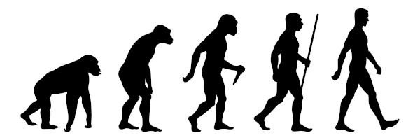 A figura dá uma ideia incorreta de que a evolução ocorre de maneira progressiva.