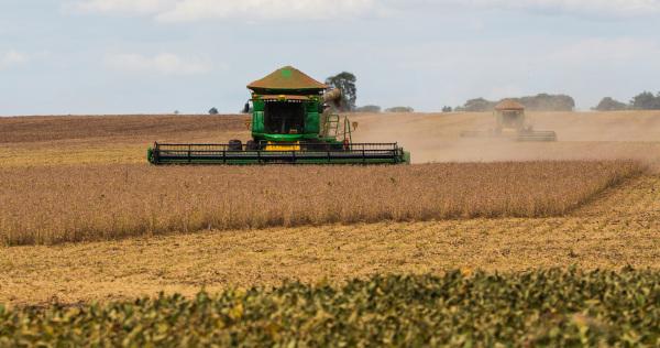 A soja lidera a produção agrícola no Mato Grosso do Sul.