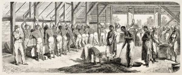 Dos 10 aos 17 anos, Luís Gama foi escravizado no Rio de Janeiro e em São Paulo.