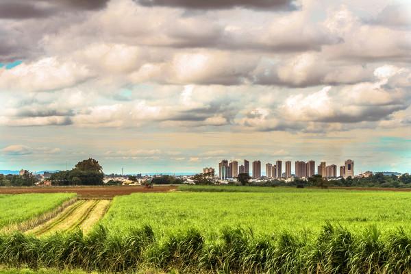 Êxodo rural é a saída de pessoas do campo rumo às cidades.