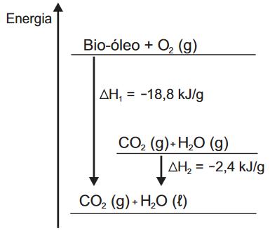 Gráfico representando a queima de um bio-óleo com sua variação de entalpia por grama e os produtos da reação.