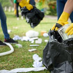 Pessoas pegando lixo da grama