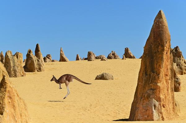 Deserto australiano.