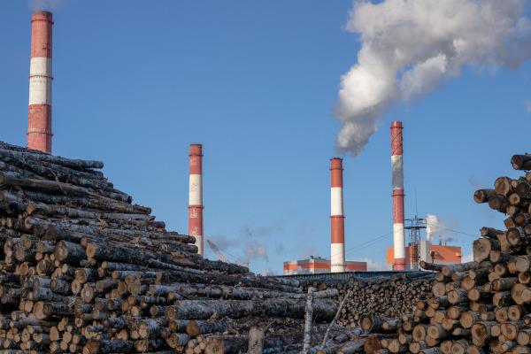 A ação do homem pode ser responsável pelo desequilíbrio ambiental.