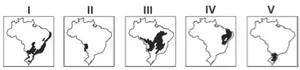 Mapas do Brasil marcando: área litorânea brasileira e Sudeste; MT e MS; Centro-Oeste; parte do Nordeste; parte do Sul.