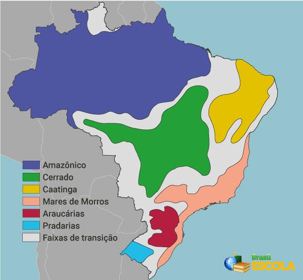 Distribuição dos domínios morfoclimáticos no território brasileiro.