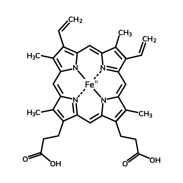 Molécula de hemoglobina com o íon Fe2+ ao centro.