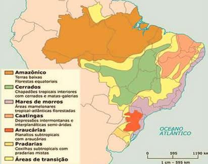 Os seis domínios morfoclimáticos brasileiros