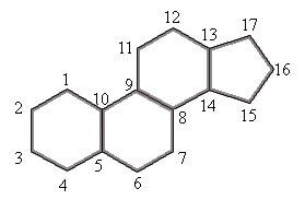 Estrutura básica de um esteroide
