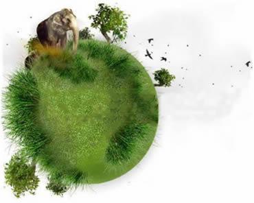 Biologia, uma ciência que busca respostas e interpretações aos eventos da natureza.