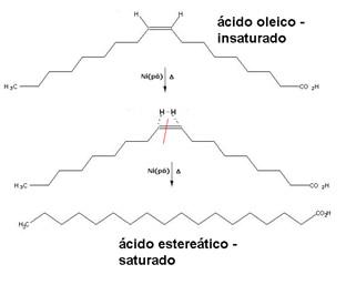 Hidrogenação