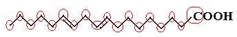 Quantidade de carbonos na molécula do ácido linoleico