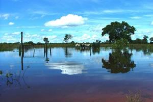 Pantanal - Refúgio Ecológico