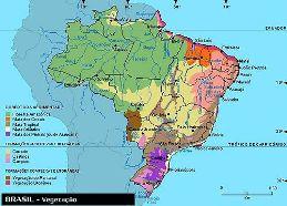 Mapas F  Sicos   S  O Mapas Que Representam Os Fatores Naturais