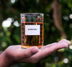 Biosiesel em recipiente sob mão masculina