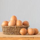 Observação da osmose no ovo