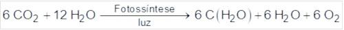 Equação química da reação da fotossíntese