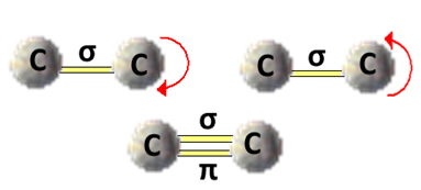 Modelo de rotação da ligação simples
