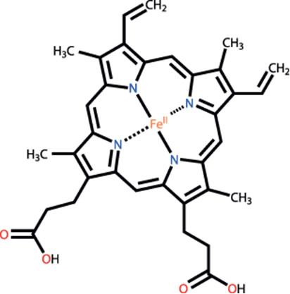 Fórmulaestrutural do Heme B, componente importante da hemoglobina