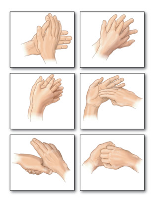 Demonstre aos alunos, seguindo essas orientações, o modo correto de lavar as mãos