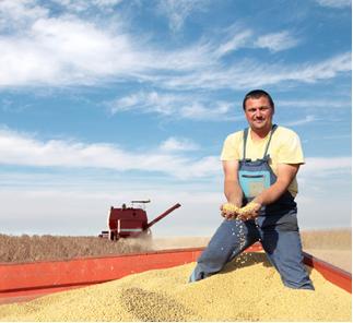 A maior parte do biodiesel produzido pelo Brasil vem da soja