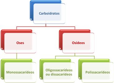 Estrutura simplificada da classificação dos carboidratos
