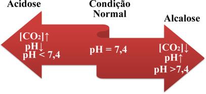http://s5.static.brasilescola.com/img/2013/06/alcalose-e-acidose.jpg