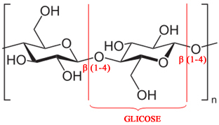 A celulose é formada pela condensação de um grande número de moléculas de glicose