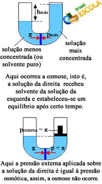 Osmose e pressão osmótica