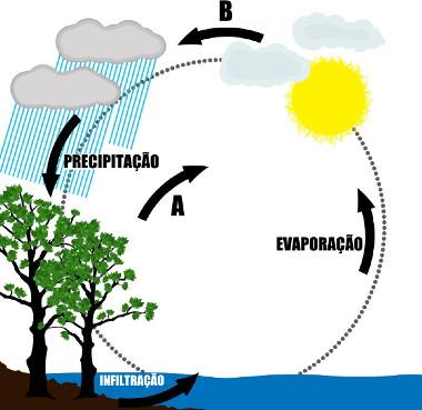 Esquema explicativo do ciclo da água