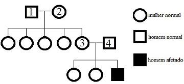 Heredograma de uma família portadora de uma herança ligada ao sexo