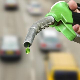 A gasolina aditivada da Petrobras recebe a adição de corante verde