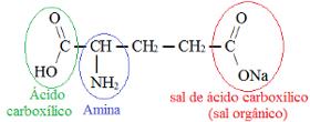 Funções orgânicas presentes em composto