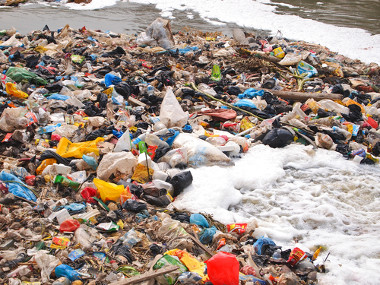 Os polímeros de origem fóssil não são biodegradáveis e geram grande poluição