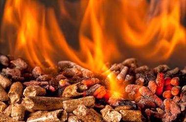 A biomassa é utilizada como fonte de eletricidade e também como biocombustível