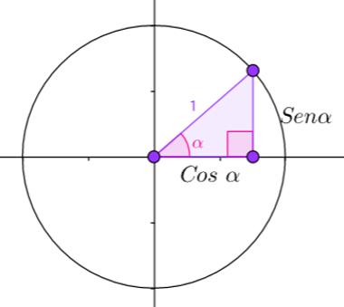 Círculo de raio 1, no qual é colocado um triângulo retângulo para avaliar suas propriedades