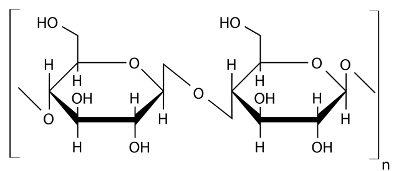 Observe a estrutura da celulose, um polímero de glicose