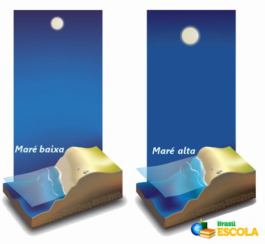 A posição da Lua em relação à Terra determina em que porção do planeta haverá maré alta ou baixa