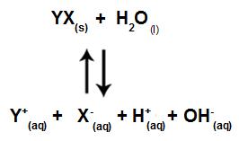 Equação que apresenta todos os íons presentes na solução