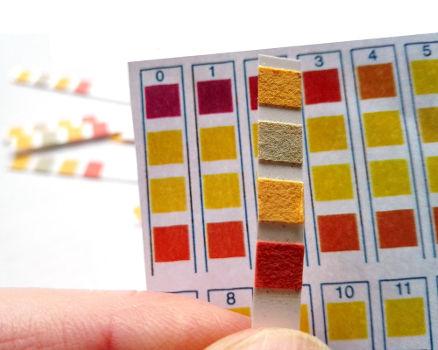 Exemplo de um modelo de papel indicador utilizado na identificação de ácidos e bases