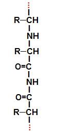 Fórmula estrutural de uma proteína