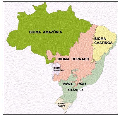 Localização dos biomas brasileiros no mapa.