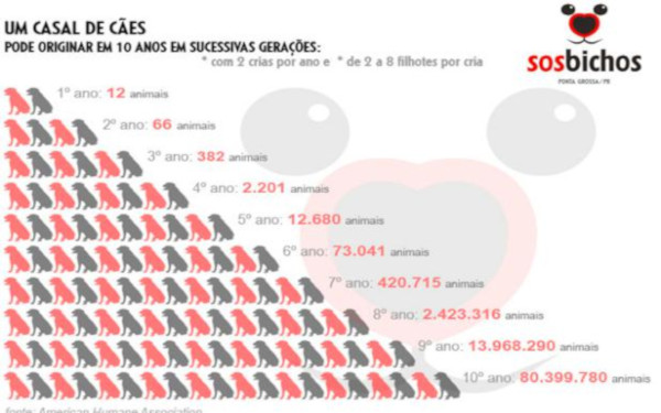 Gráfico: População canina